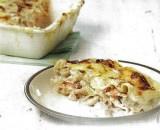 Lasagne met zalm en witloof